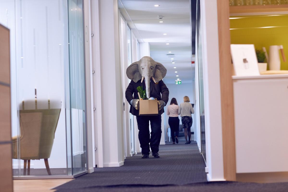 Elefanten i rummet_004